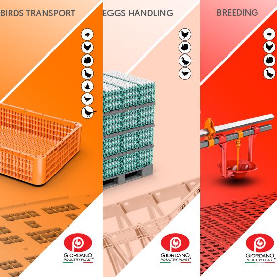 Nuevos catálogos Giordano Poultry Plast