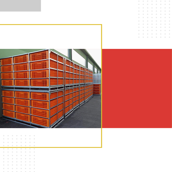 Poultry transport by Giordano Poultry Plast